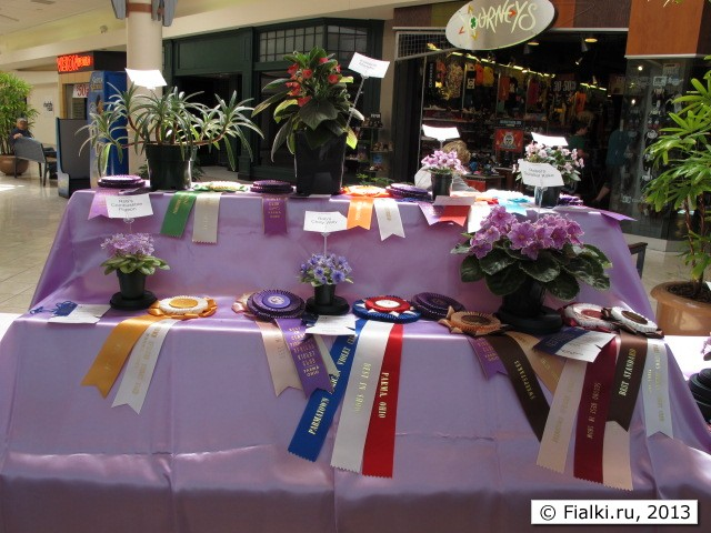 Best in Show table