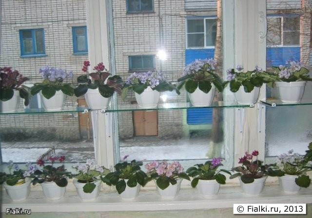 Полки для цветов стеклянные