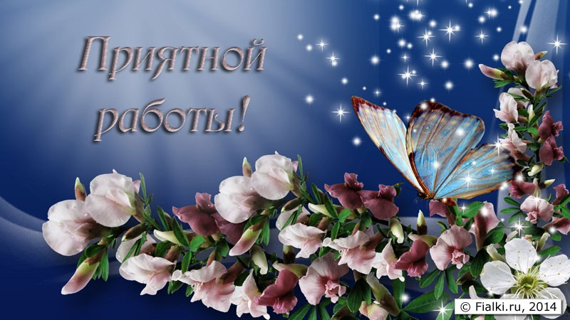 spring-into-summer-bright-butterfly-firefox-persona-flowers-light-smoke-sparkle-spring-stars-1440x2560
