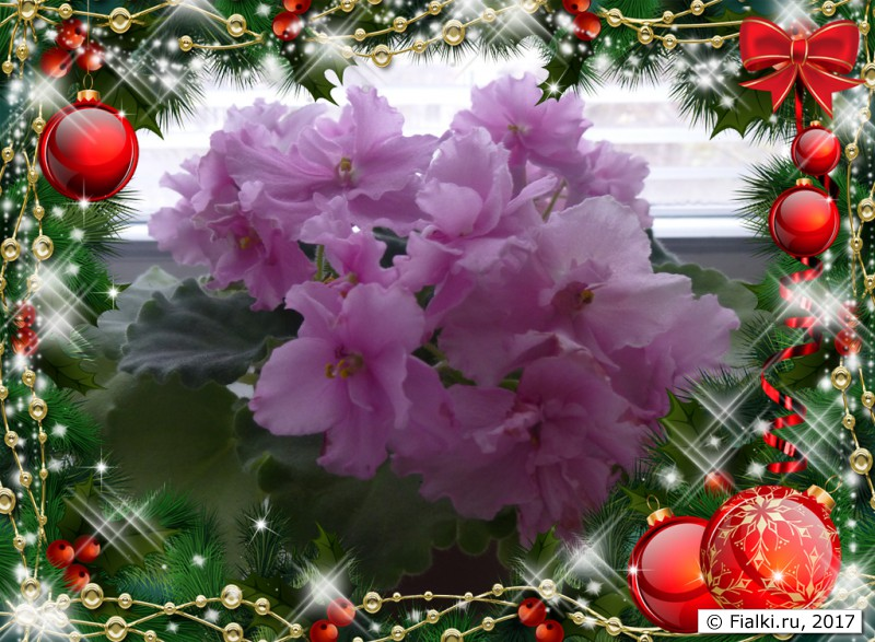 christmas_PNG17243